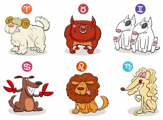 Животное по знаку зодиака: как узнать талисманы по дате рождения и их значение