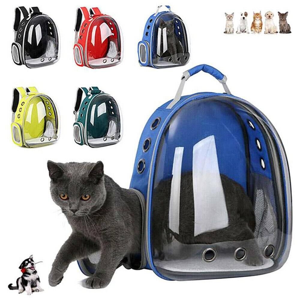 Переноски для кошек и котов: виды и бренды, плюсы и минусы, чем руководствоваться при выборе переноски