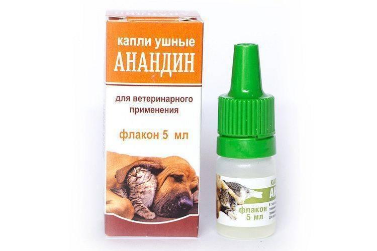 «анандин» для кошек: инструкция по применению