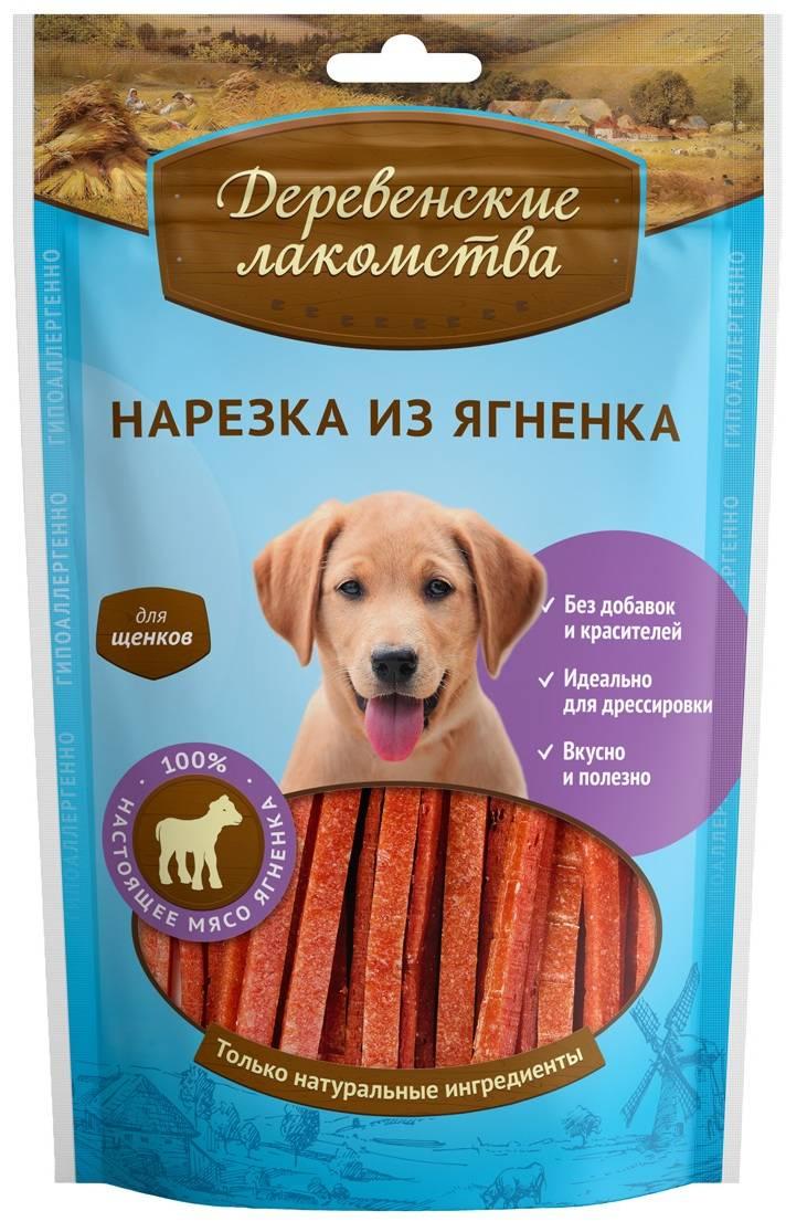 Лакомства для собак: виды, лучшие производители и особенности выбора