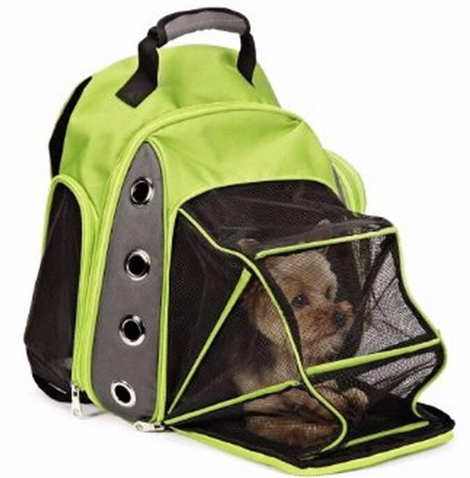 Требования к переноскам для собаки для перевозки в самолете: виды контейнеров