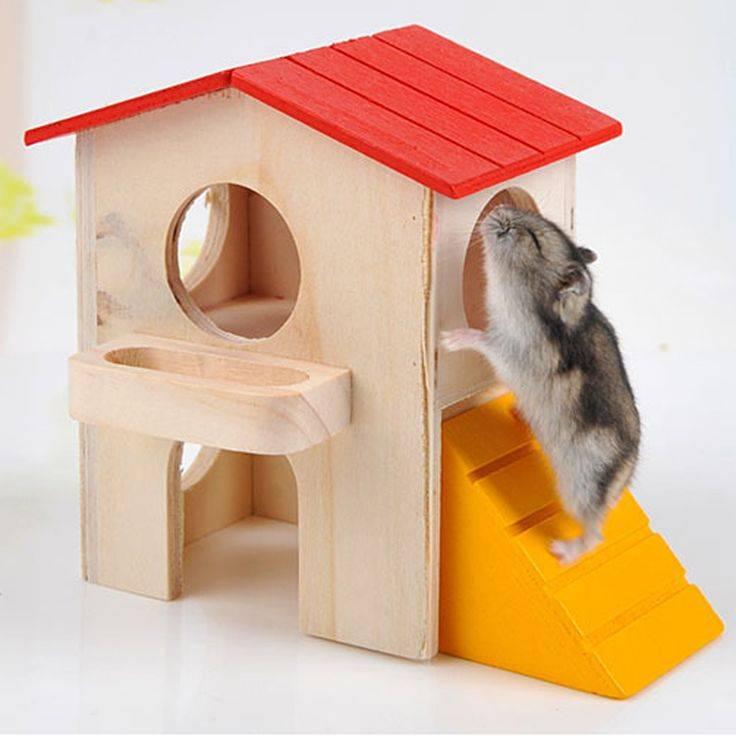 Как сделать домик для хомяка своими руками: особенности постройки