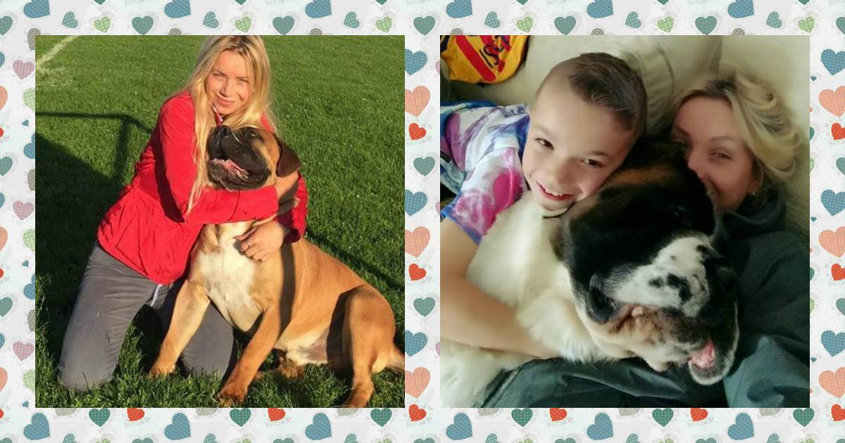 Самые популярные клички для собак девочек и мальчиков, красивые, лучшие и другие имена