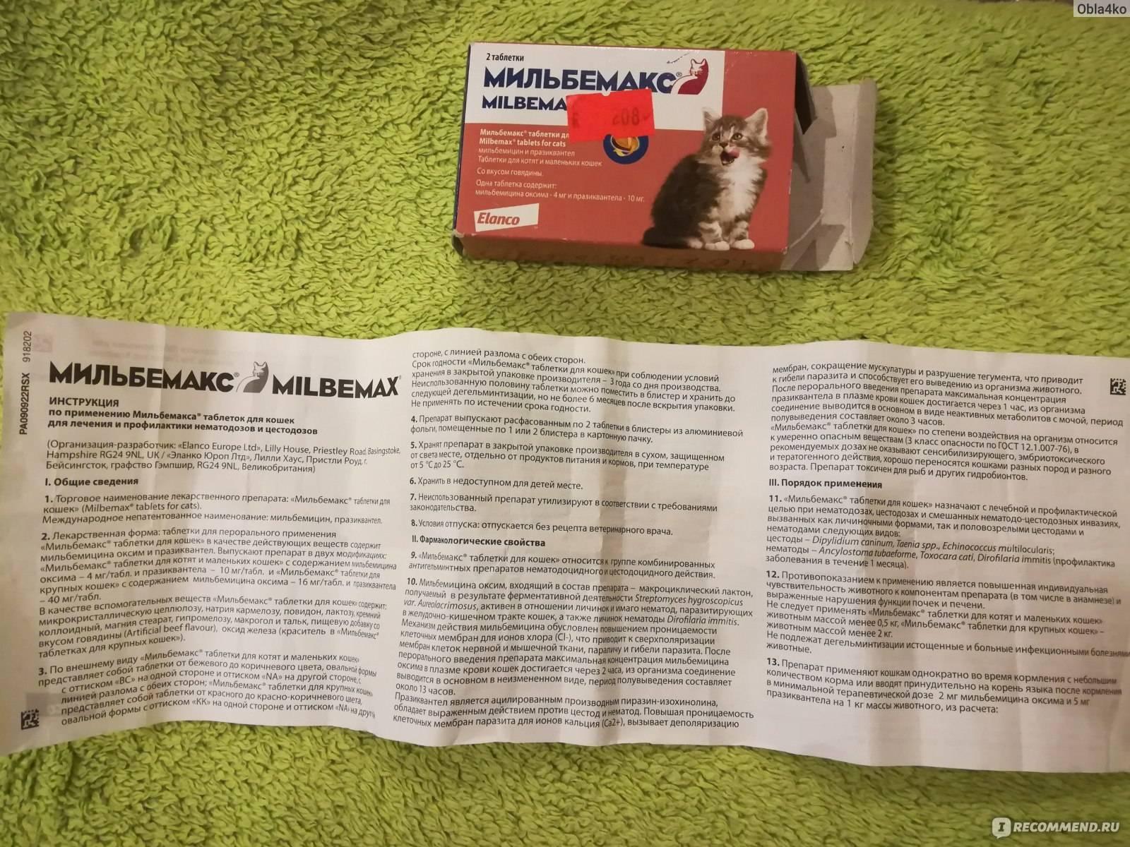 Мильбемакс для котят - таблетки для котят, состав, применение, дозировка