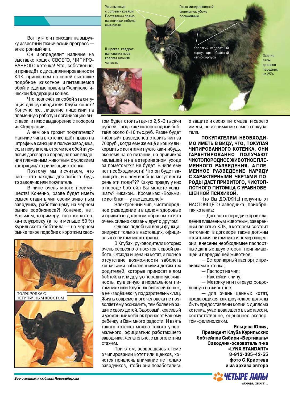 Подробная инструкция как начать разводить кошек