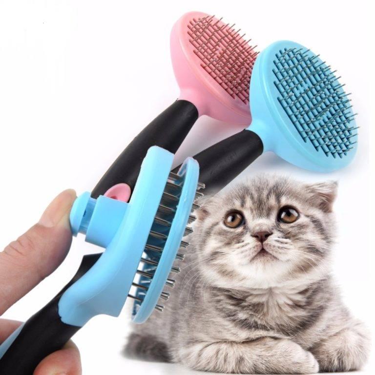 Правильный уход за котом, избавление от шерсти в квартире, с одежды