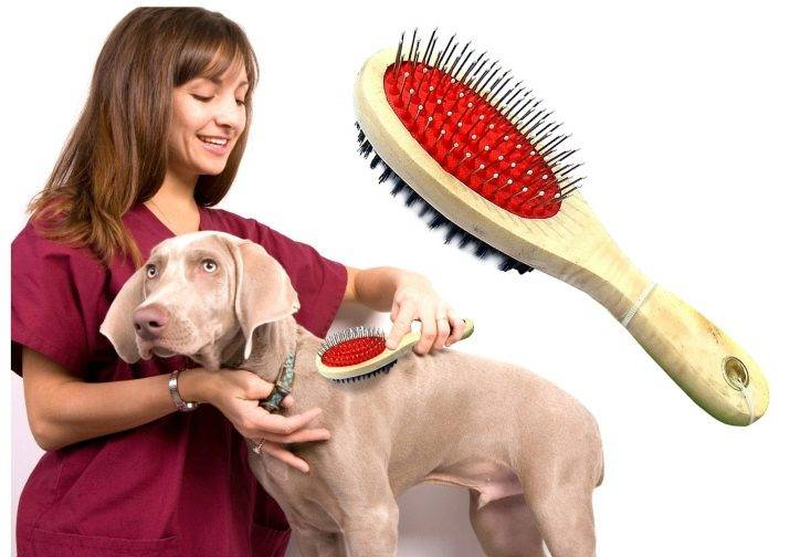 Расчески для собак (32 фото): описание пуходерок, чесалок и других видов. как выбрать расческу для собак с длинной шерстью и для короткошерстных собак?