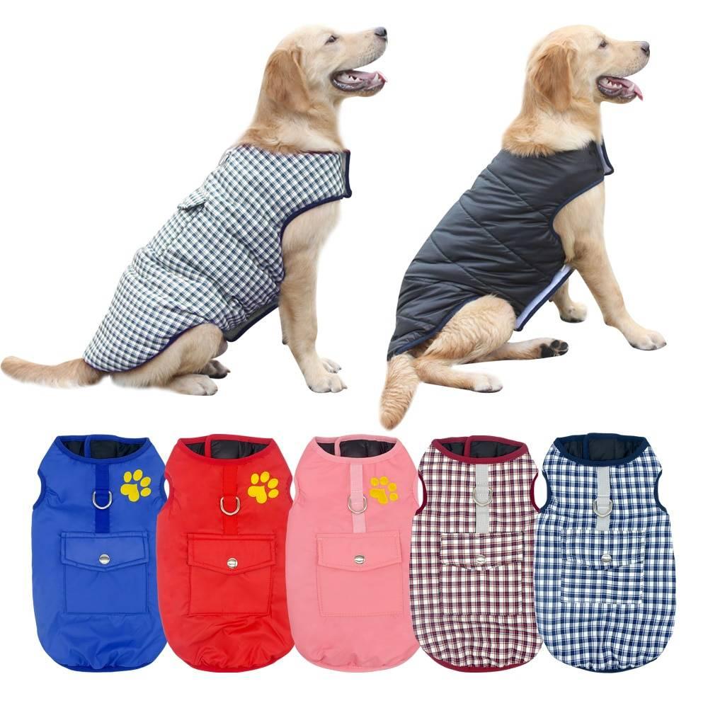 Одежда для собак – зачем нужно надевать одежду на животных, и какие варианты существуют?