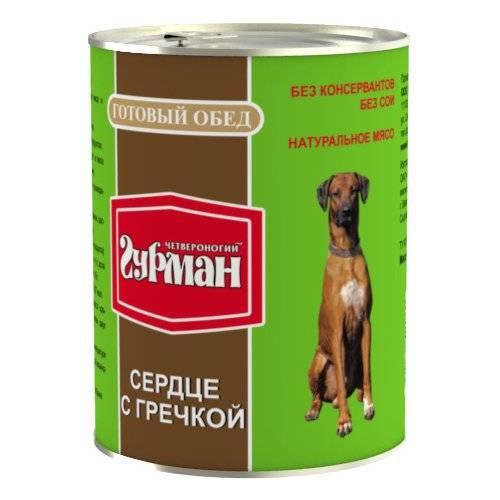 Корм четвероногий гурман для собак: отзывы, где купить, состав