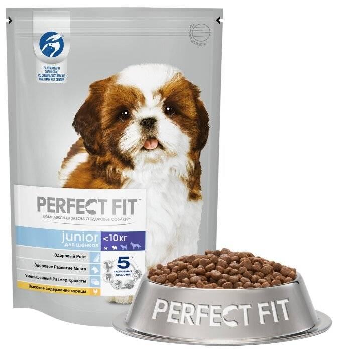 Корма для собак супер-премиум класса: рейтинг лучших производителей