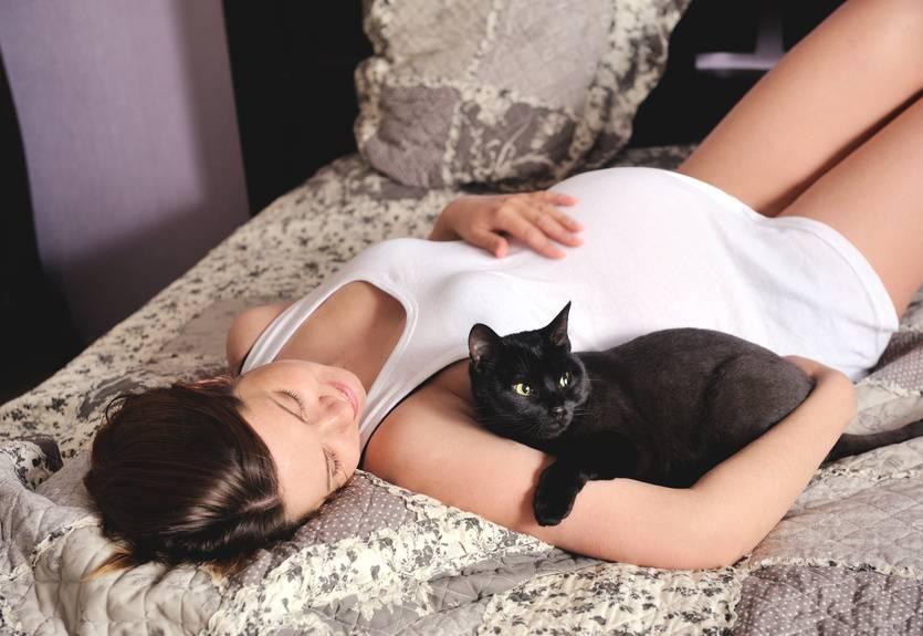 Опасны ли кошки для беременных. 3 причины для беспокойства