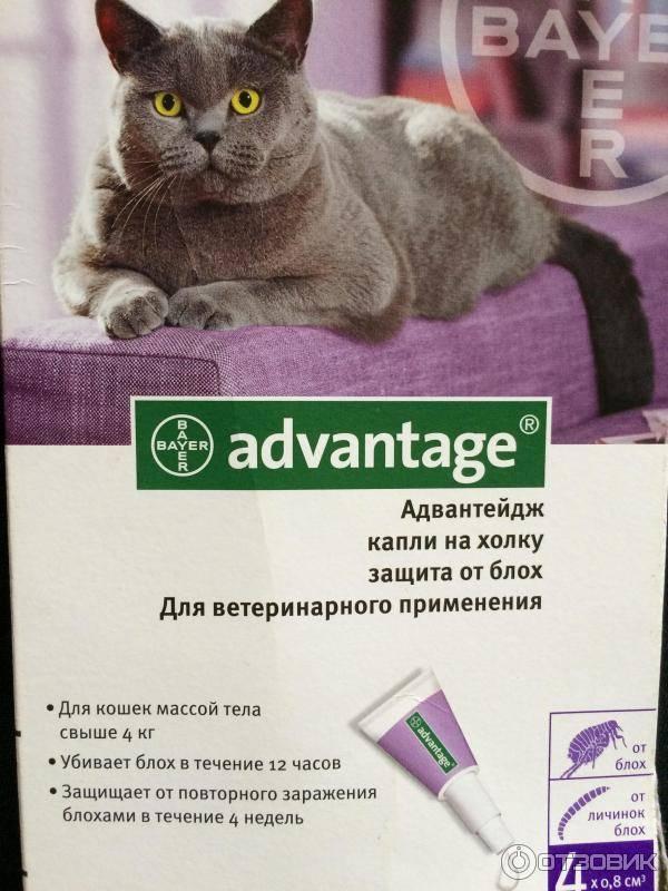 Advantage   капли адвантейдж для кошек и собак   имидаклоприд инструкция, применение