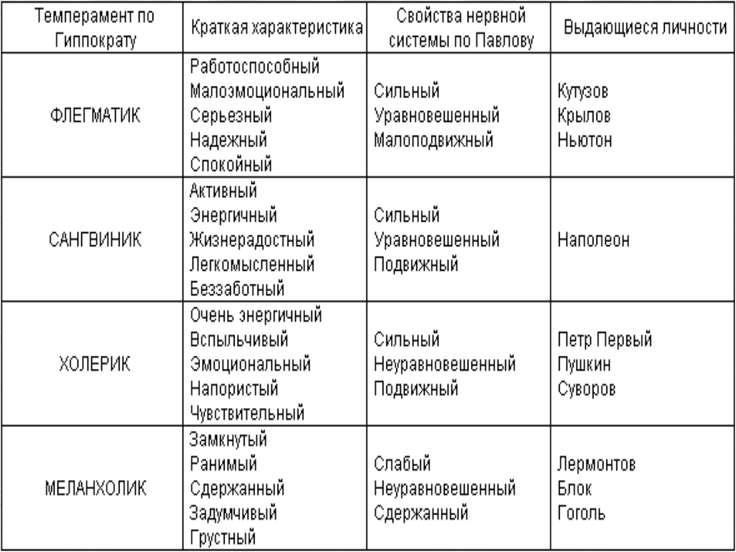 Норфлок-терьер: описание породы и особенности характера