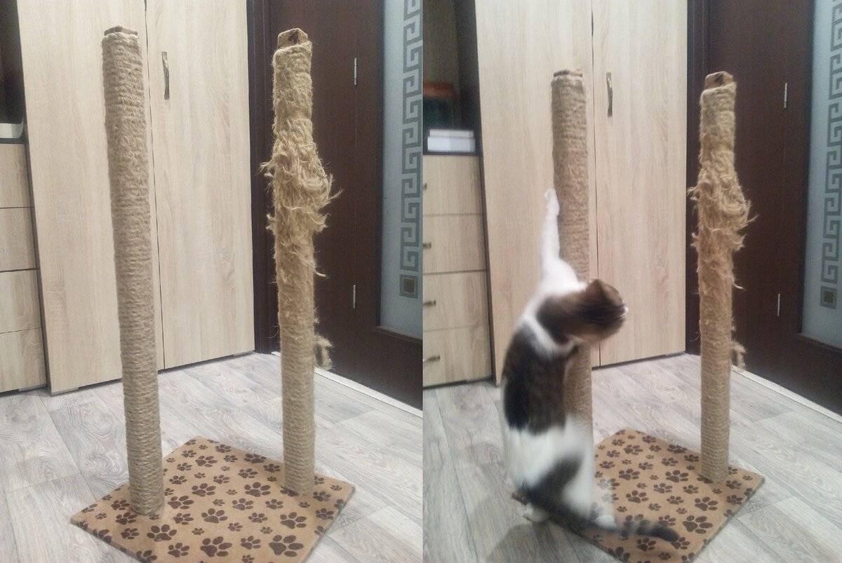 Как сделать когтеточку для кошки своими руками: 15 мастер классов