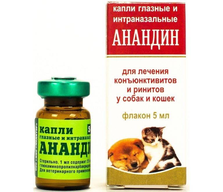 Анандин для кошек - инструкция по применению, отзывы, цена | сайт «мурло»