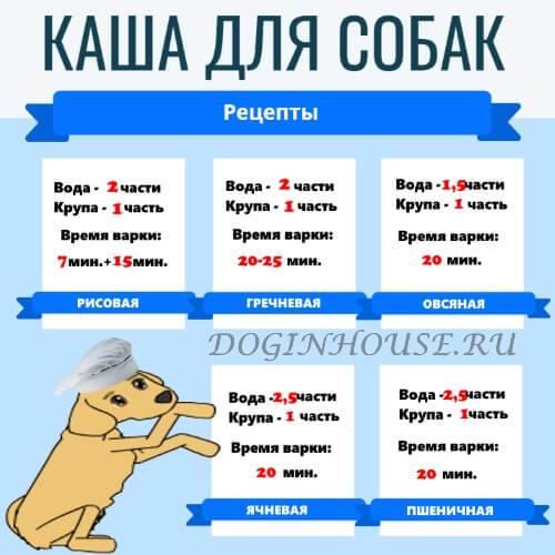 Какие крупы можно и нельзя давать собакам крупных и мелких пород, какую можно варить