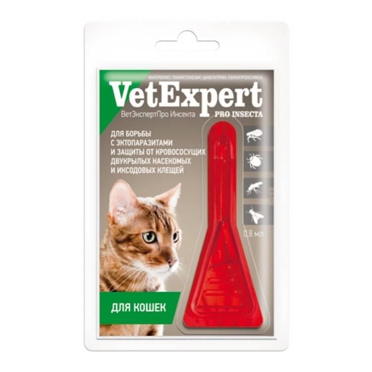 Бравекто для кошек: показания и инструкция по применению, отзывы, цена