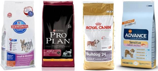 Обзор лучших кормов премиум и супер-премиум класса для всех собак