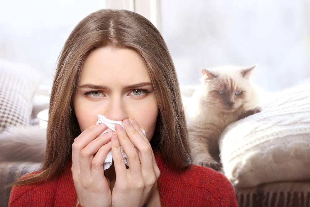 Можно ли научиться жить с неприятными симптомами без лечения и проходит ли аллергия на кошек у детей