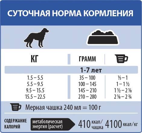 Температура у собаки - норма, как измерить, первая помощь