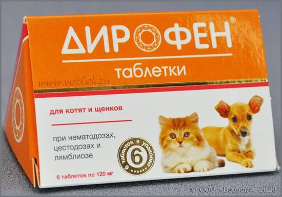 Обзор препарата дирофен плюс – таблетки для кошек: инструкция по применению