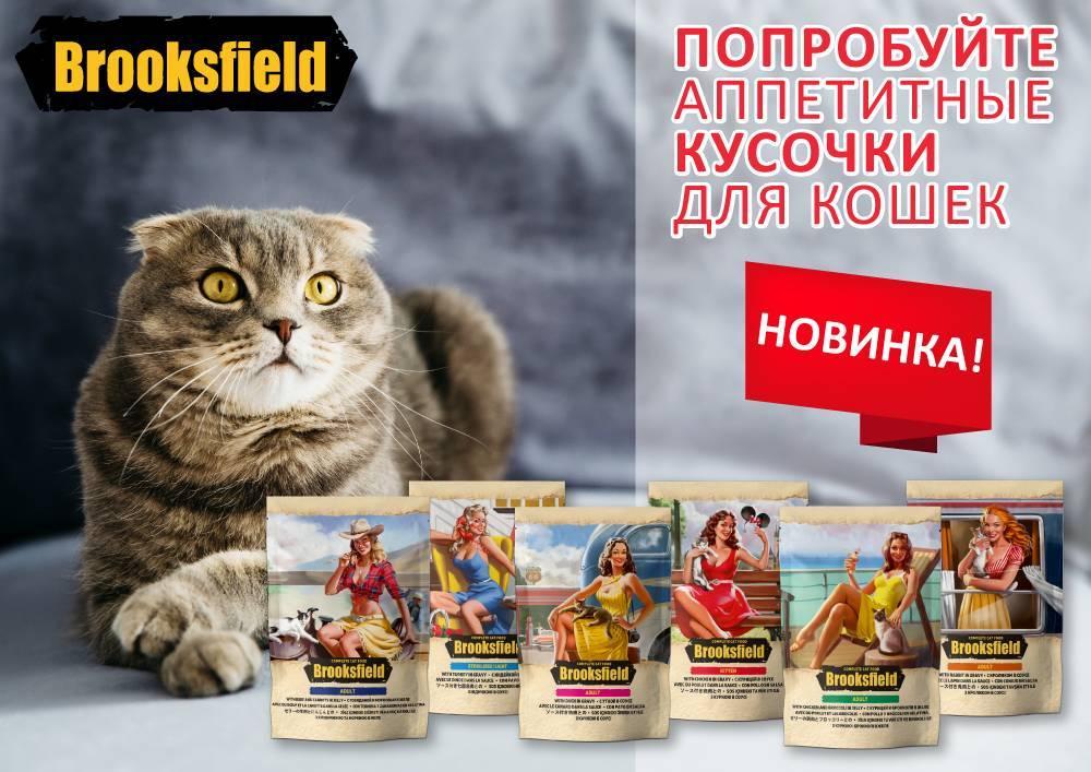 Корм для кошек brooksfield: отзывы, разбор состава, цена - kotiko.ru корм для кошек brooksfield: отзывы, разбор состава, цена - kotiko.ru