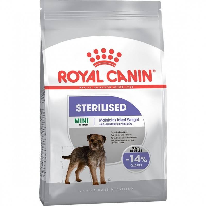 Как выбрать корм для собаки: сухой или влажный, лечебный, премиум или холистик, для мелких или крупных пород, щенков или пожилых собак