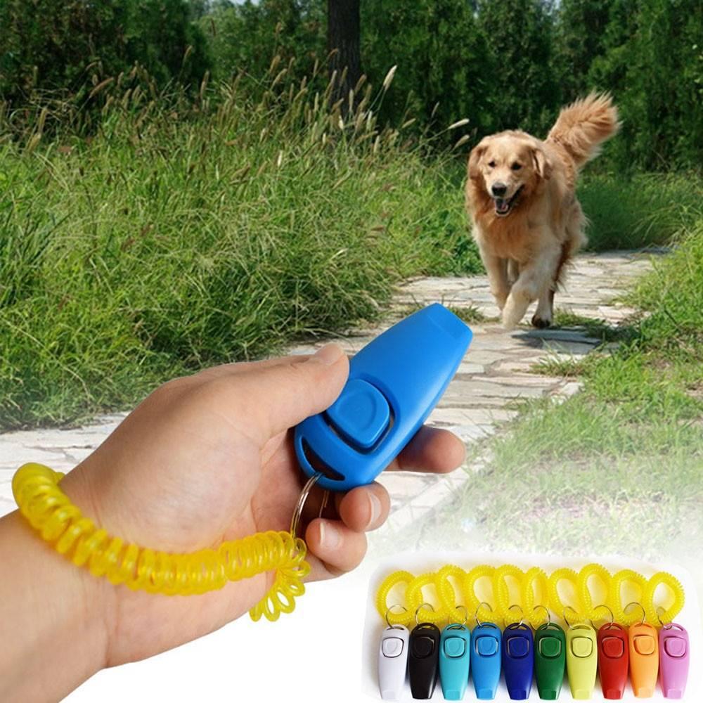 Кликер для дрессировки собак: советы по использования, цены и обзор популярных моделей