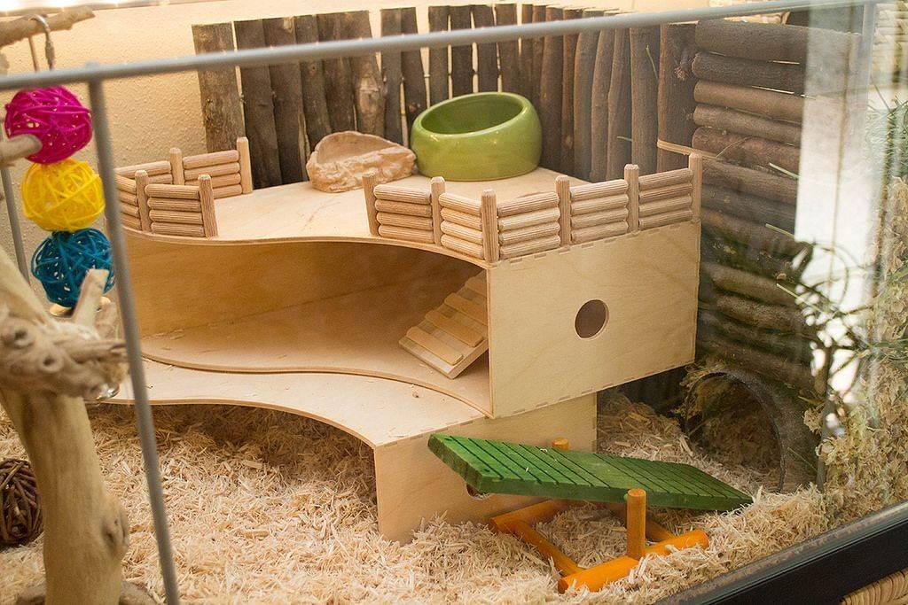 Комфортный домик для морских свинок своими руками