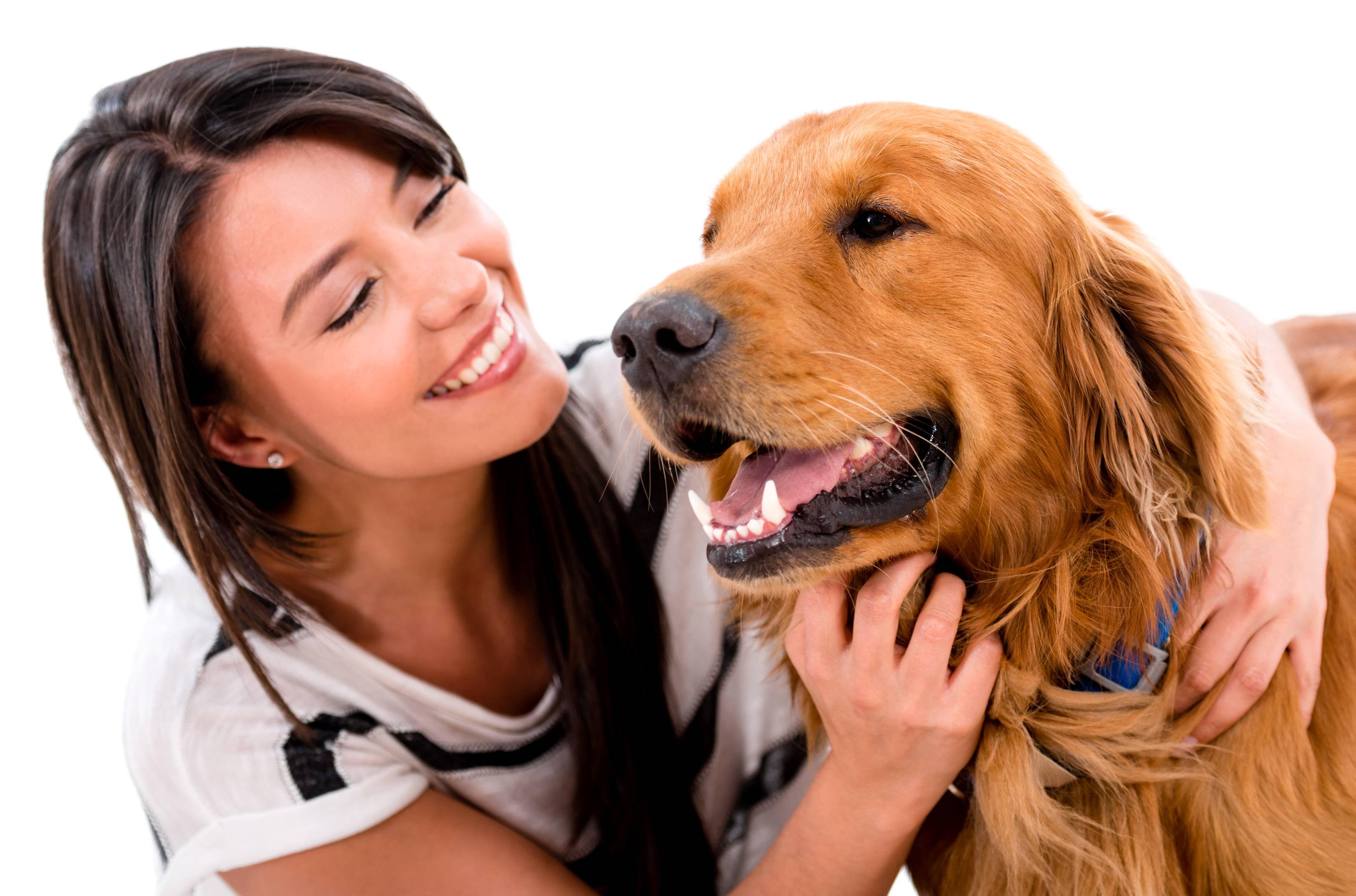 ᐉ 5 улыбающихся пород собак: могут ли собаки улыбаться - kcc-zoo.ru