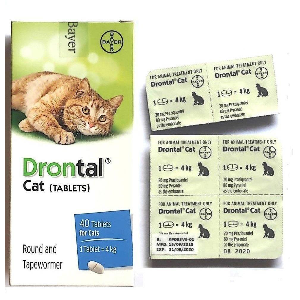 Дронтал для кошек: инструкция по применению, дозировка, отзывы ветеринаров