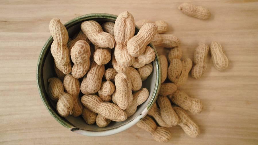 Можно ли собакам орехи арахис — про кур