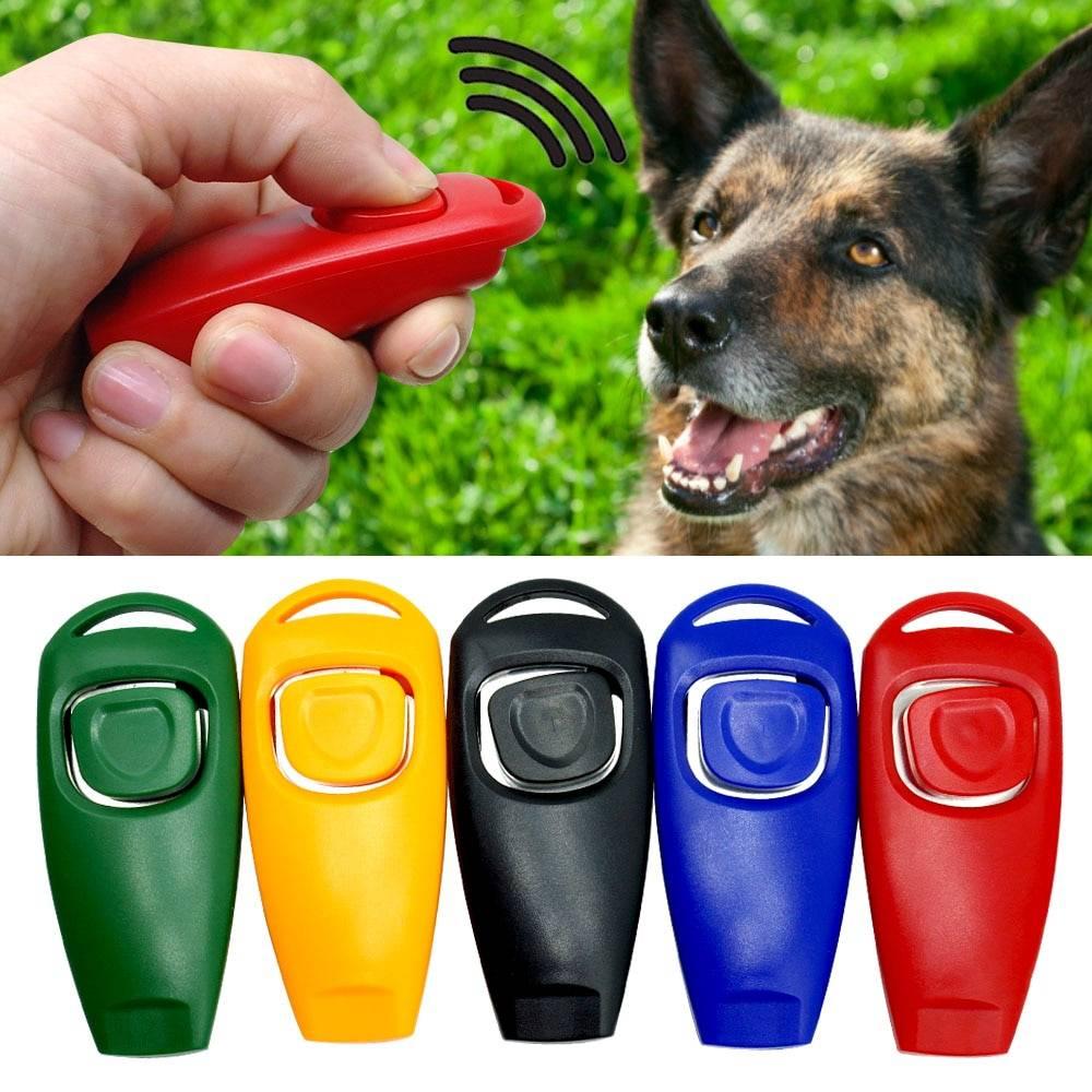 Основы кликер-дрессировки собак: принципы и недостатки метода