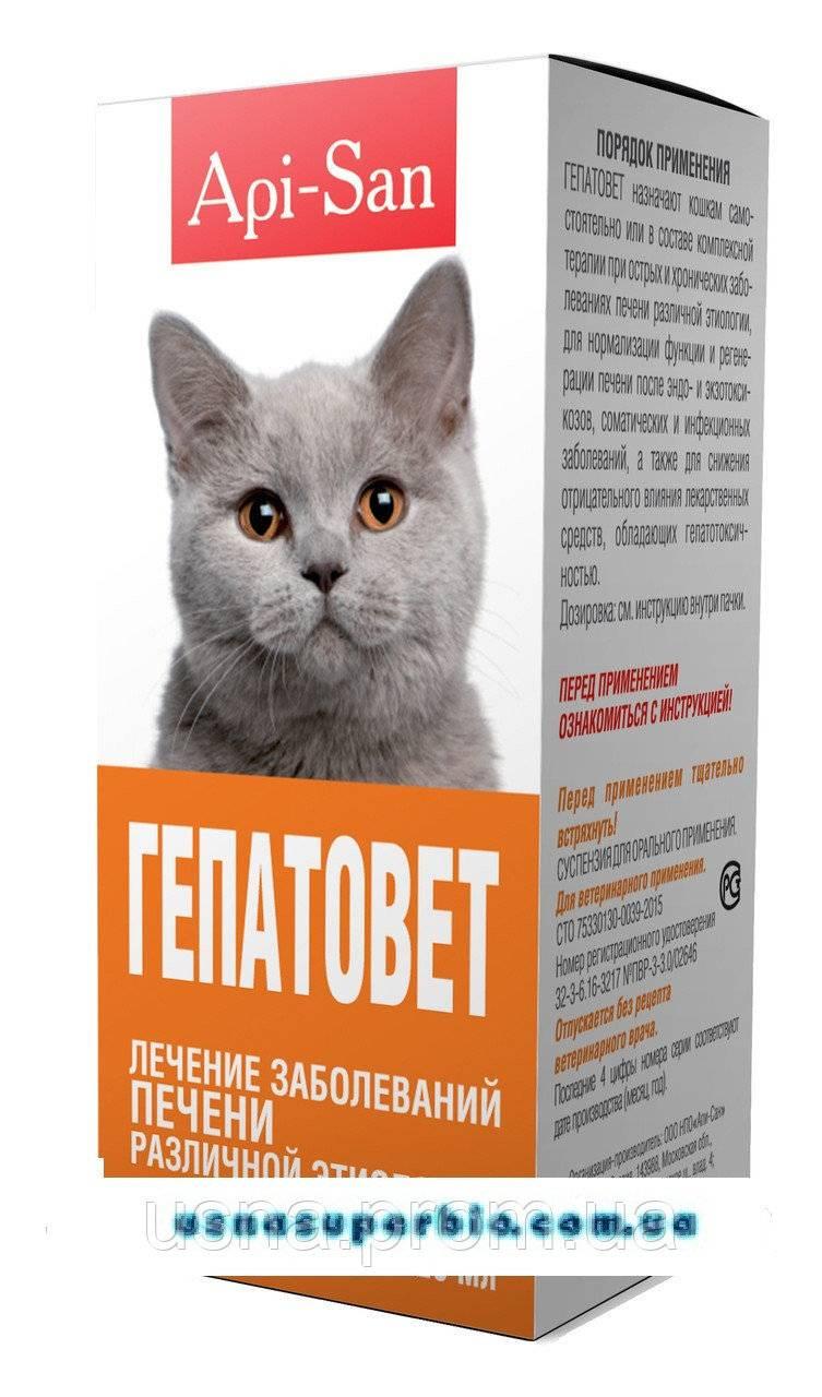 """""""гепатовет"""" для собак: инструкция, показания к использованию гепатопротектора, отзывы владельцев"""
