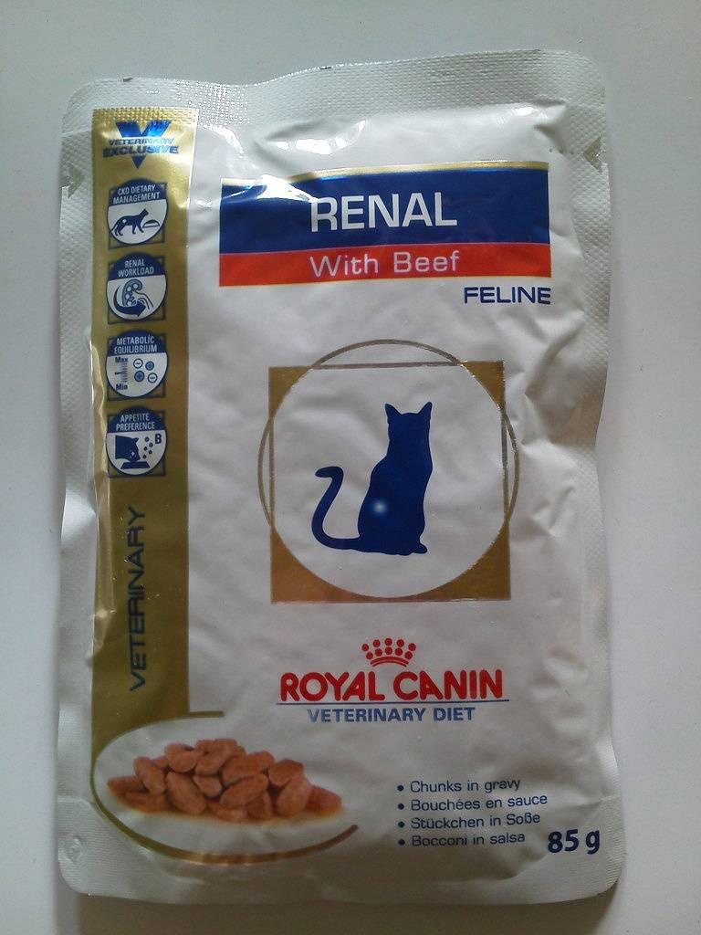 Корм для кошек и котят royal canin («роял канин»): обзор линейки, состав, отзывы ветеринаров и владельцев животных