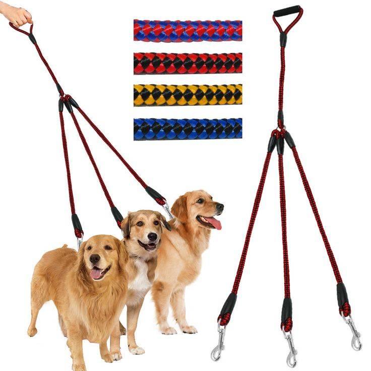 Мастер-класс по выбору и изготовлению важного атрибута для каждой собаки — поводка