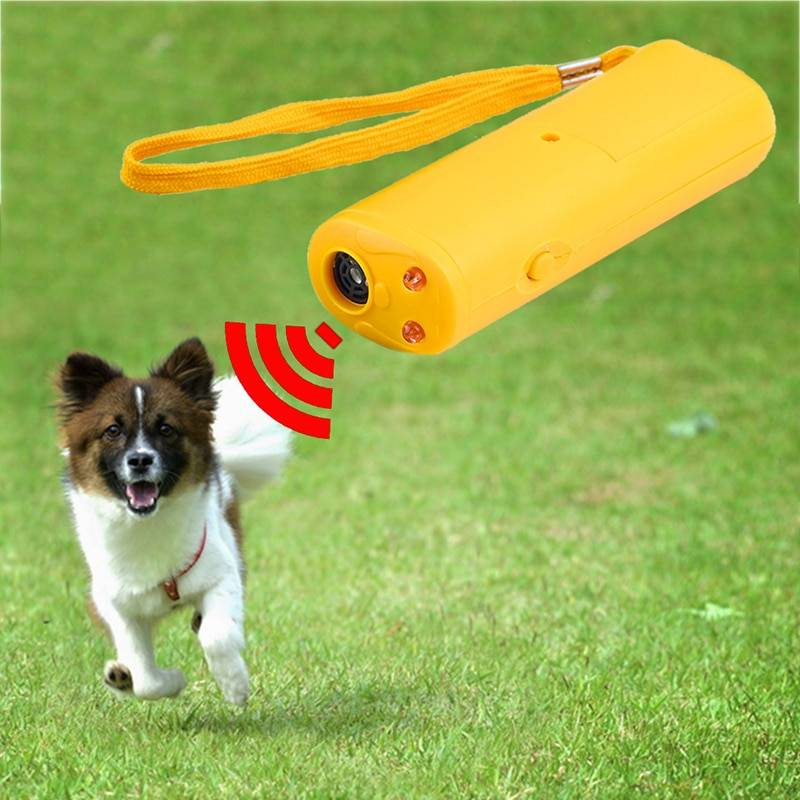 Ультразвуковой свисток для отпугивания и дрессировки собак: цена, где купить?