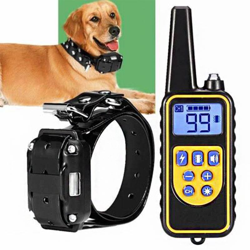 Электронный ошейник: методика обучения собаки