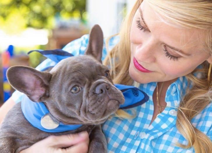 Собаки российских звезд: любимые питомцы