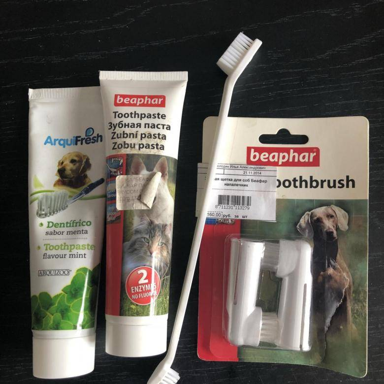 Зубастик для собак в виде геля и спрея: инструкция по применению стоматологического средства для чистки зубов