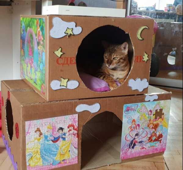 Домики для кошек своими руками - 150+ (фото) делаем пошагово
