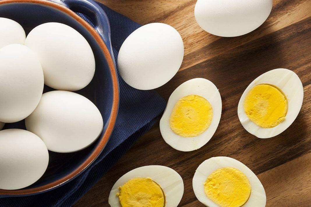 Можно ли крысе яйцо вареное и сырое (белок и желток)