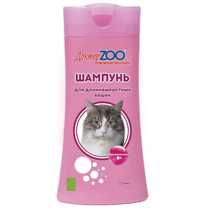 Шампунь для кошек – как часто и правильно купать питомца, чтобы приучить его к этой процедуре?
