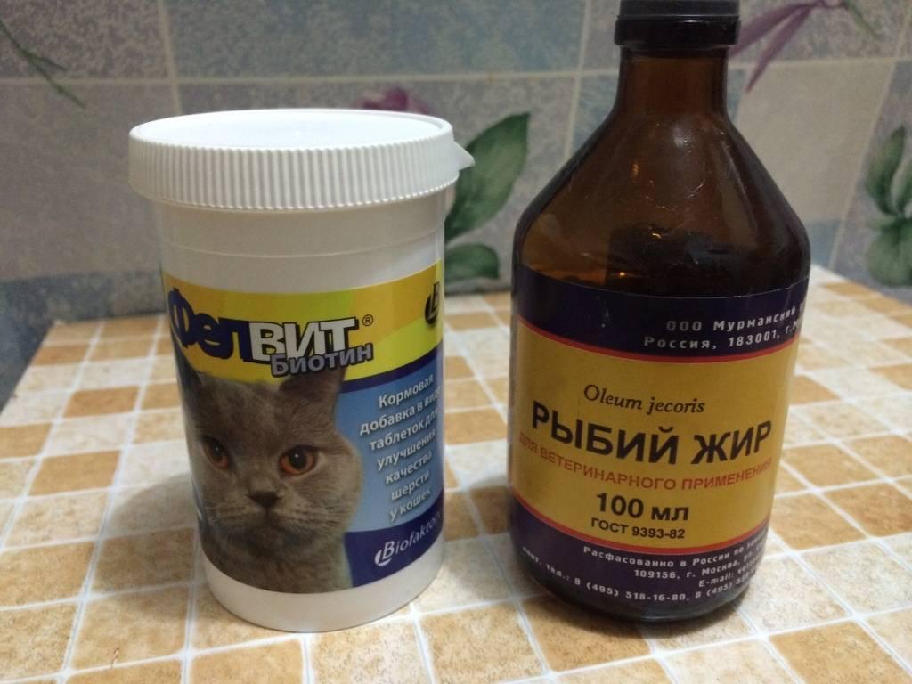 Рыбий жир для собак: рекомендации и дозировка | dogkind.ru