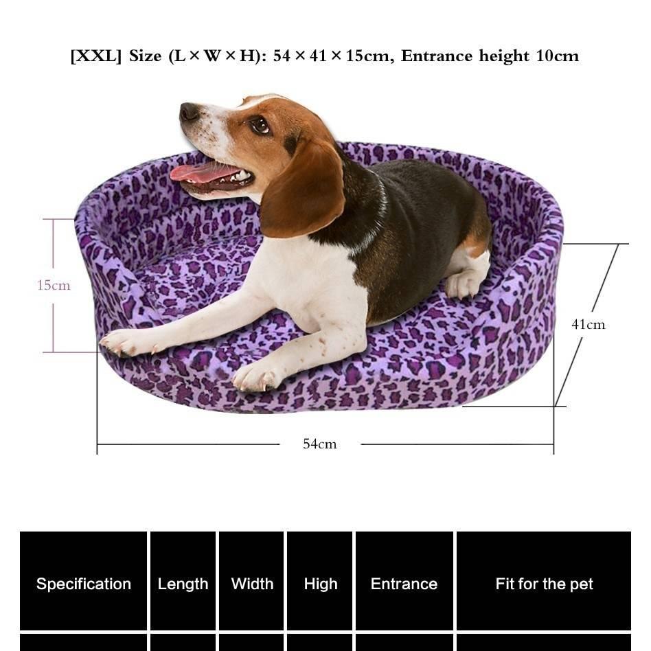 Лежанка для собак – для чего нужна, основные виды, как выбрать, существующие размеры