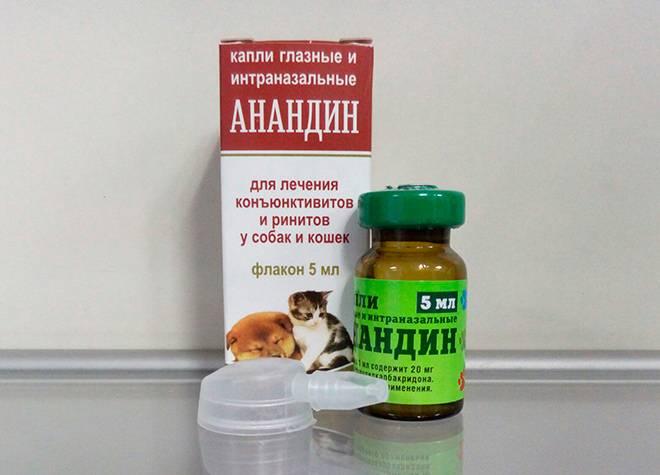 Капли анандин для кошек: показания, порядок применения