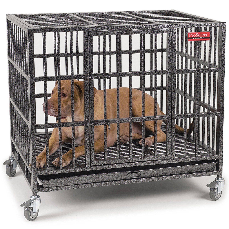 За решеткой — все о собачьих клетках