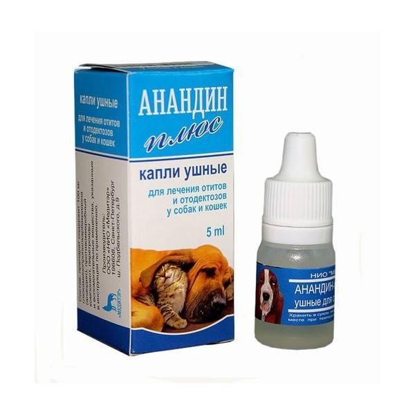 «анандин» для кошек: форма выпуска, применение, советы