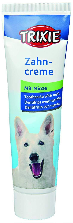 Зубной камень у собак: лазерная и механическая чистка зубов, операция под наркозом, препараты и средства для снятия, спрей и гель, как убрать налёт