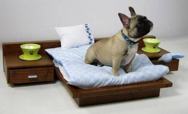 Как приучить щенка спать в отдельной комнате. как приучить щенка спать ночью: полезные советы. зачем выбирать время для приучения к месту